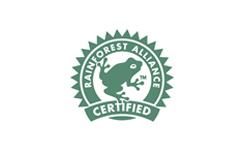 Cafeology Rainforest Alliance Certified Coffee